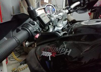 TRIUMPH TIGER XC 800